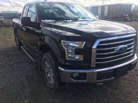 2017 Ford F-150 for sale at Canuck Truck in Magrath AB