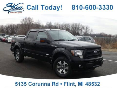 2013 Ford F-150 for sale at Jamie Sells Cars 810 - Linden Location in Flint MI