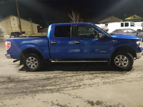 2014 Ford F-150 for sale at Freds Auto Sales LLC in Carson City NV