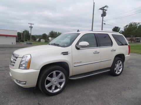 2014 Cadillac Escalade for sale at DUNCAN SUZUKI in Pulaski VA