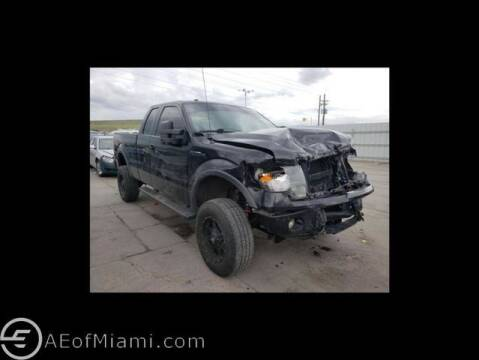 2012 Ford F-150 for sale at ELITE MOTOR CARS OF MIAMI in Miami FL