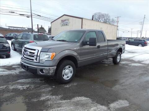 2009 Ford F-150 for sale at Terrys Auto Sales in Somerset PA