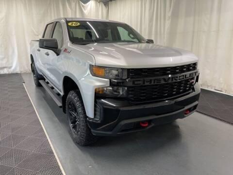 2020 Chevrolet Silverado 1500 for sale at Monster Motors in Michigan Center MI