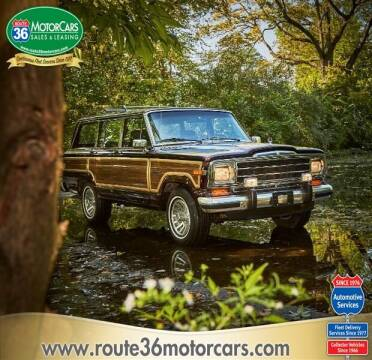 1991 Jeep Grand Wagoneer for sale at ROUTE 36 MOTORCARS in Dublin OH
