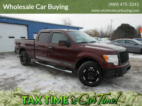 2010 Ford F-150 for sale at Wholesale Car Buying in Saginaw MI