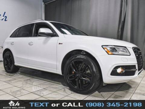 2015 Audi SQ5 for sale at AUTO HOLDING in Hillside NJ