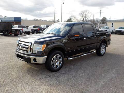 2009 Ford F-150 for sale at Young's Motor Company Inc. in Benson NC