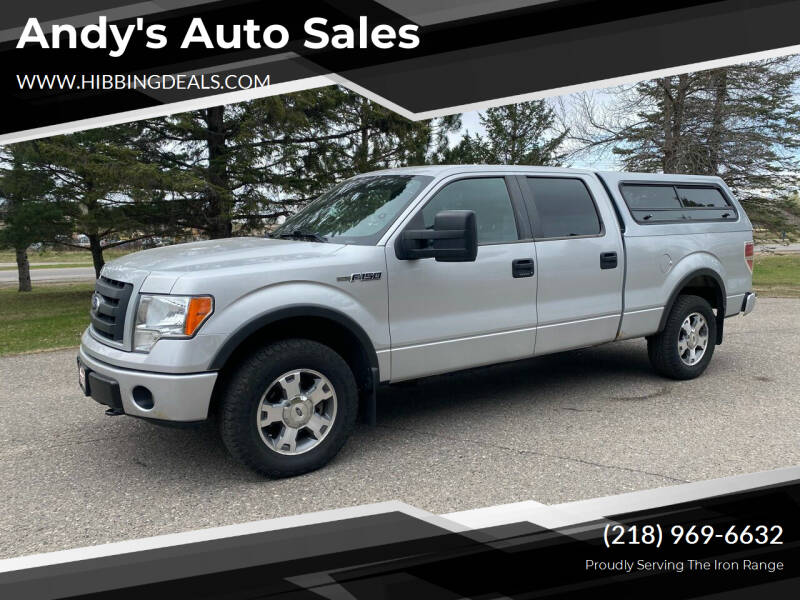 2009 Ford F-150 for sale at Andy's Auto Sales in Hibbing MN