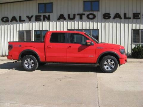 2013 Ford F-150 for sale at Galyen Auto Sales in Atkinson NE