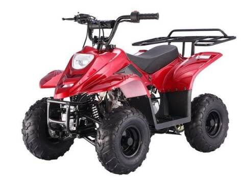 2021 TRAILMASTER T110 SPORT for sale at VICTORY AUTO in Lewistown PA