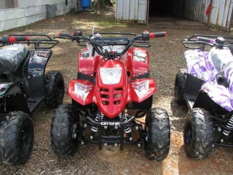 2019 QIYE R1 COOLSTER 110 for sale at Johnson Used Cars Inc. in Dublin GA