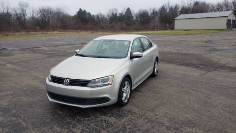 2011 Volkswagen Jetta for sale at Caruzin Motors in Flint MI