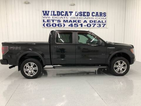 2011 Ford F-150 for sale at Wildcat Used Cars in Somerset KY