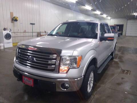 2013 Ford F-150 for sale at Willrodt Ford Inc. in Chamberlain SD