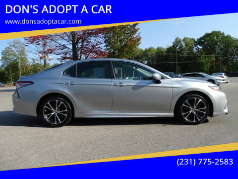 2019 Toyota Camry for sale at DON'S ADOPT A CAR in Cadillac MI