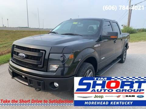 2014 Ford F-150 for sale at Tim Short Chrysler in Morehead KY