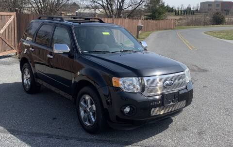 2009 Ford Escape for sale at Pak Auto Corp in Schenectady NY