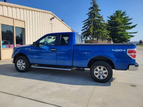 2010 Ford F-150 for sale at Chuck's Sheridan Auto in Mount Pleasant WI