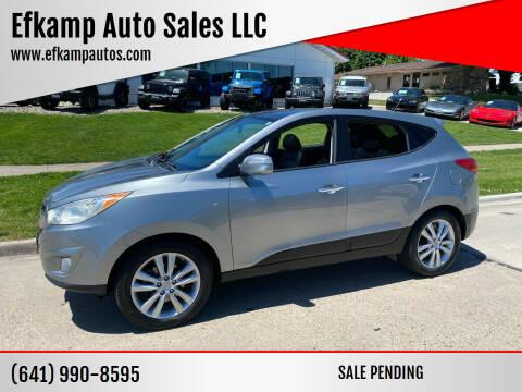 2010 Hyundai Tucson for sale at Efkamp Auto Sales LLC in Des Moines IA