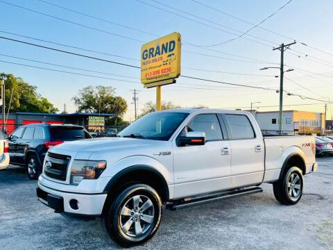 2013 Ford F-150 for sale at Grand Auto Sales in Tampa FL