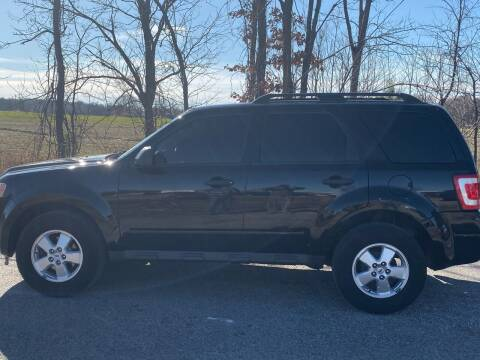 2010 Ford Escape for sale at RAYBURN MOTORS in Murray KY