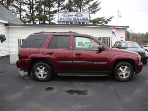 2004 Chevrolet TrailBlazer for sale at G and G AUTO SALES in Merrill WI