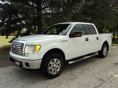 2011 Ford F-150 for sale at HUSHER CAR COMPANY in Caledonia WI