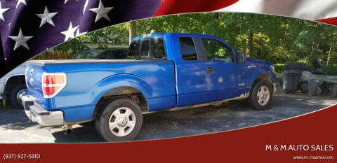 2014 Ford F-150 for sale at M & M Auto Sales in Hillsboro OH