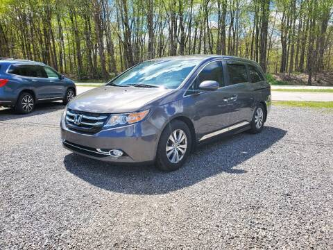 2014 Honda Odyssey for sale at US-Euro Auto in Burton OH