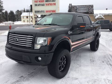 2011 Ford F-150 for sale at Vinci's Auto Sales Inc. in Bessemer MI