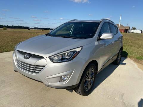 2015 Hyundai Tucson for sale at Sartins Auto Sales in Dyersburg TN