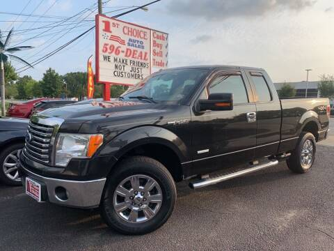 2011 Ford F-150 for sale at 1st Choice Auto Sales in Newport News VA