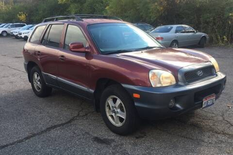 2004 Hyundai Santa Fe for sale at WEINLE MOTORSPORTS in Cleves OH