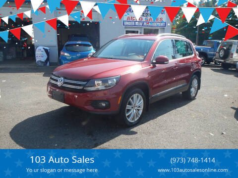 2014 Volkswagen Tiguan for sale at 103 Auto Sales in Bloomfield NJ