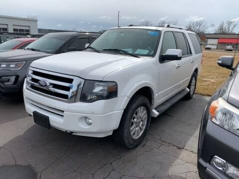 2013 Ford Expedition for sale at BORGMAN OF HOLLAND LLC in Holland MI