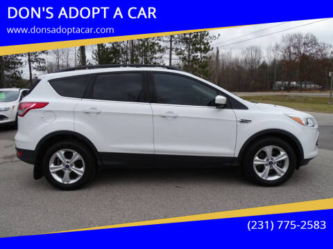 2013 Ford Escape for sale at DON'S ADOPT A CAR in Cadillac MI