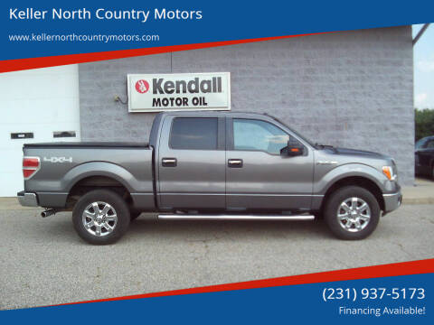 2013 Ford F-150 for sale at Keller North Country Motors in Howard City MI
