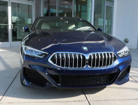 2022 BMW 8 Series for sale at Southern Auto Solutions - BMW of South Atlanta in Marietta GA