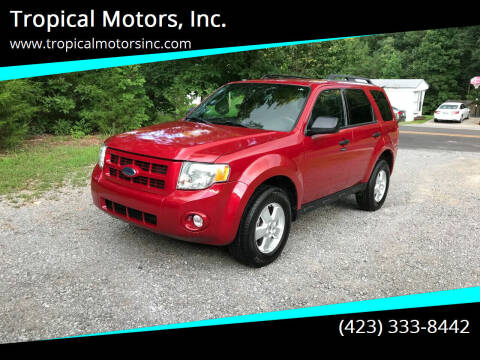2010 Ford Escape for sale at Tropical Motors, Inc. in Riceville TN
