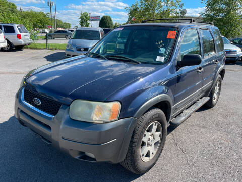 2004 Ford Escape for sale at Diana Rico LLC in Dalton GA