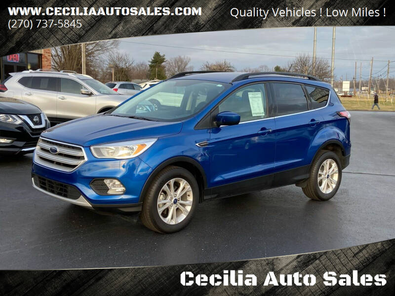 2018 Ford Escape for sale at Cecilia Auto Sales in Elizabethtown KY