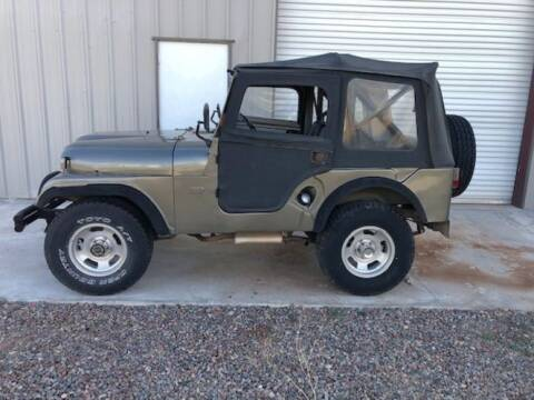 1959 Jeep Willys for sale at Classic Car Deals in Cadillac MI