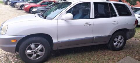2005 Hyundai Santa Fe for sale at W & D Auto Sales in Fayetteville NC