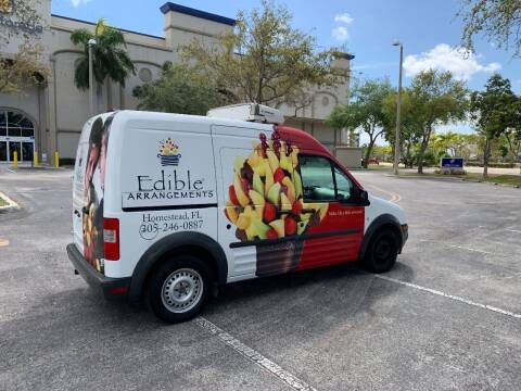 2013 Ford Transit Connect for sale at BIG BOY DIESELS in Ft Lauderdale FL