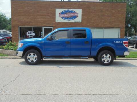 2012 Ford F-150 for sale at Eyler Auto Center Inc. in Rushville IL