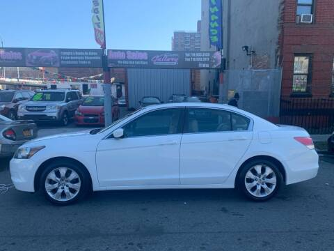 2009 Honda Accord for sale at Gallery Auto Sales in Bronx NY