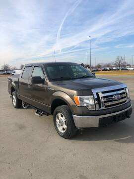 2009 Ford F-150 for sale at Cargo Vans of Chicago LLC in Mokena IL