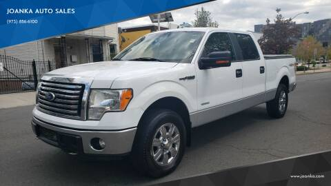 2011 Ford F-150 for sale at JOANKA AUTO SALES in Newark NJ