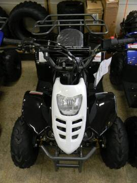 2021 OFFROAD MALL 1029 110cc Youth ATV for sale at A C Auto Sales in Elkton MD