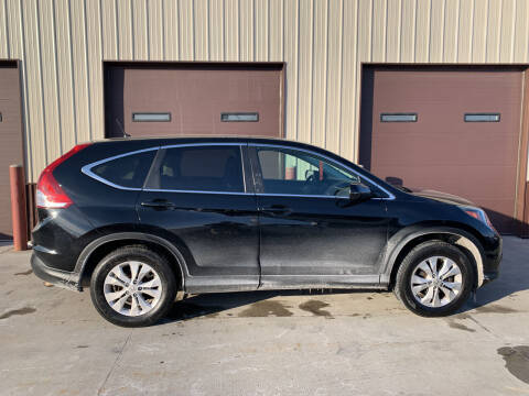 2014 Honda CR-V for sale at Dakota Auto Inc. in Dakota City NE